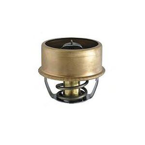 Valvula-Termostatica-Motor-82°C-Sem-Reparo-24782-Mte-Thomson