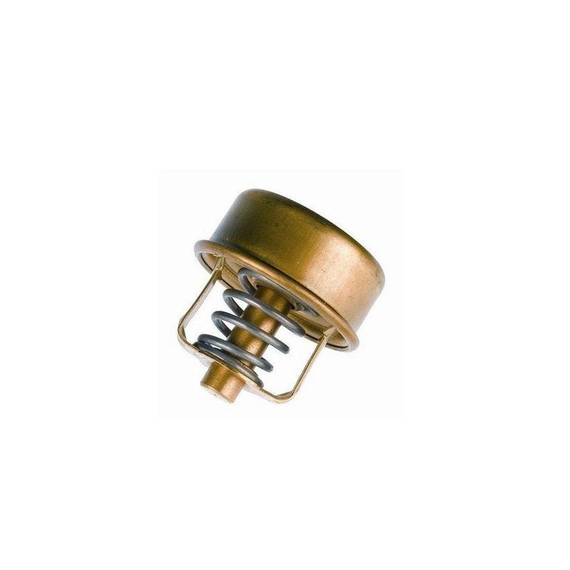 Valvula-Termostatica-Motor-77°C-Sem-Reparo-304977-Wahler