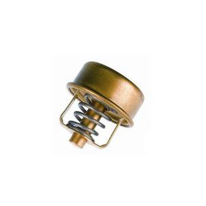 Valvula-Termostatica-Motor-82°C-Sem-Reparo-304982-Wahler