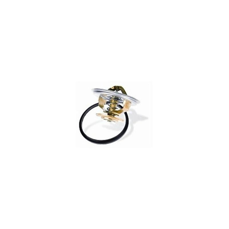 Valvula-Termostatica-Motor-79°C-Sem-Reparo-452079-Wahler
