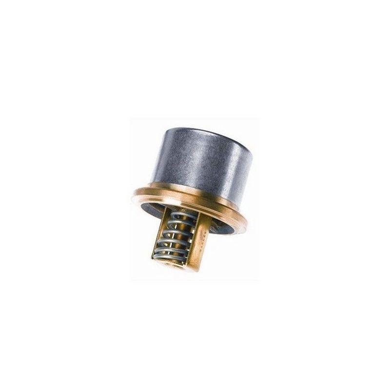 Valvula-Termostatica-Motor-82°C-Sem-Reparo-461382-Wahler