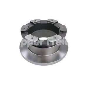 Disco-Freio-Traseiro-Solido-Sem-Cubo-306Mm-6-Furos-Hf72E-Hipper-Freios